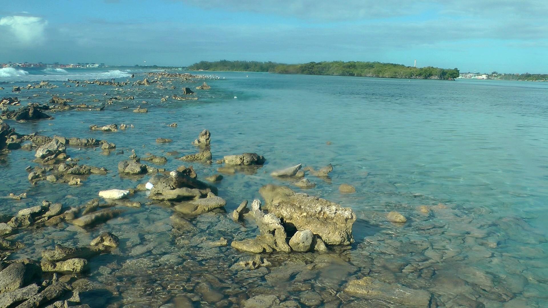 Вид на лагуну и мангры с рифа